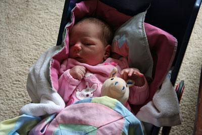 Johanna-in-doll-cart