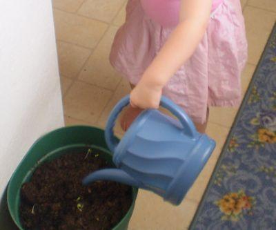 Toddler Helping
