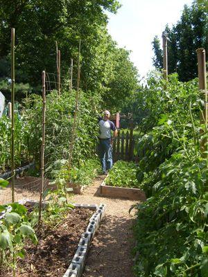 Ambers garden1