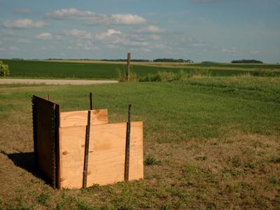 Compost photo 1