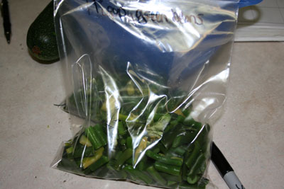 Bag-of-blanched-green-beans